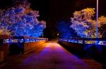 Lichtfest City Nord-10