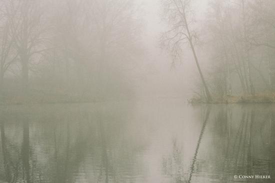 65 DREAMY LAKE
