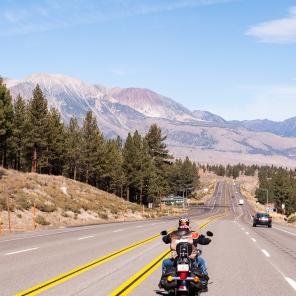 Auf geht´s Richtung Tioga Pass