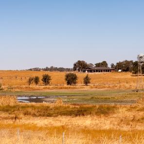 Eine Farm.