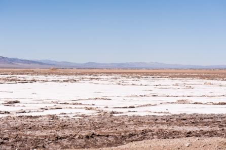 Salz in der Wüste