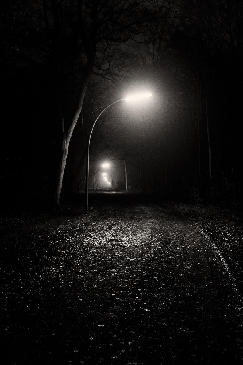 LIGHTS (2 von 3)