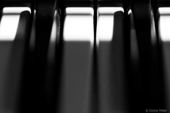 Licht- und Schattenwürfe in s/w