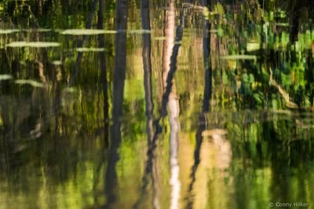 Spiegelung im Wasser, auf den Kopf gestellt. Kreativität, Fotografie