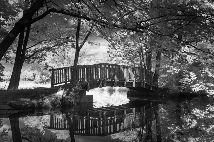 Brücke im Duvenstedter Brook. Infrarot-Aufnahme.